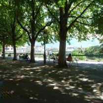 Genf P1690983 Prom. de la Treille