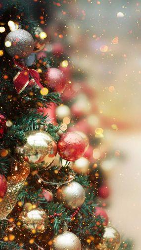 karácsonyfa, selymes fényekkel