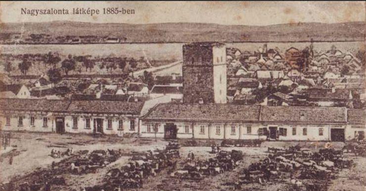 Nagyszalonta_látképe_1885-ben